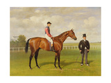 Persimmon'  Winner of the 1896 Derby  1896