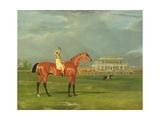 Memnon' with William Scott Up  1825
