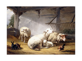 Sheep  Rabbits and a Chicken in a Barn  1859