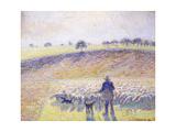 Shepherd with Sheep  1888
