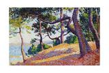 Landscape in Saint-Tropez  1892