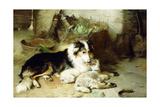 Motherless-The Shepherd's Pet  1897
