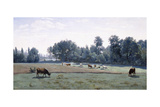 Marcoussis - Cows Grazing  1845-50