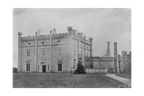 Kilronan Castle  Ireland  C1859