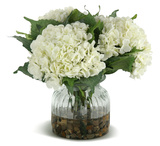 Hydrangeas - Cream Bouquet