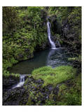 Hanawi Falls Hana Highway