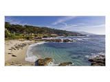 Mile Drive Monterey