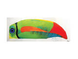 My Goodness Toucan