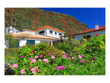 Garden and Holiday Homes in Jardim do Mar  Madeira Island  Portugal