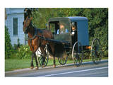 Amish in a carriage  Pennsylvania  USA