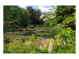 Claude Monet's Water Garden in Giverny  Department of Eure  Upper Normandy  France