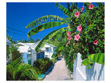 Small Clapboard House in Hope Town  Elbow Cay  Abaco Islands  Bahamas  Caribbean