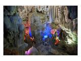 In Hang Dau Go Cave  Hang Dau Go Island in Ha Long Bay  North Vietnam  Quang Ninh  Vietnam