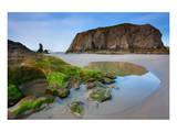 Beach near Bandon  Oregon  USA