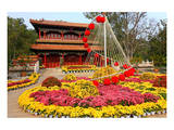 Flower Beds in Jingshan Park  Coal Hill  Beijing  China