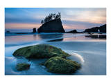 Second Beach at Olympic National Park  Washington  USA