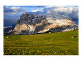 Seiser Alm and Langkofel in Schlern-Rosengarten Nature Park  Dolomites  Trentino-South Tyrol  Italy