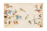 A Battle Between the Crow and Cheyenne Tribes  1874-75