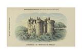 Chateau De Montreuil-Bellay  Montreuil-Bellay  Maine-Et-Loire