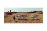 Pastures in Castiglioncello  1861