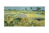 Wheatfields Near Auvers-Sur-Oise  1890
