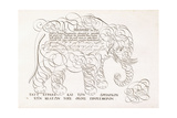 A Calligraphic Design of an Elephant  1616-1617 and Late 17th Century