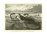 Great Sea-Reptiles of the Jurassic Period  Restored