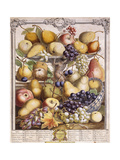 November 1732  Showing Seasonal Apples  Pears  Grapes Etc  1732