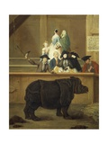 The Exhibition of the Rhino  1751
