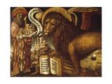 Lion of St Mark's  Symbol of Venice
