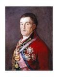 The Duke of Wellington  1812-1814