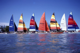 Hobie Cats Anchored and Lined Up Along the Shore  C1990