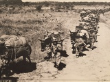 Italian Military Column Moving  Second Italo-Ethiopian War  1935-36