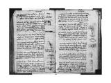 Paris Manuscript E  Fol 53V and 54R: Sketch Depicting the Flight of Birds  1513-14