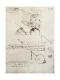 Manuscript B