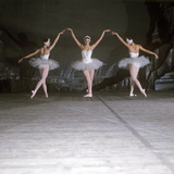 Ballet Dancers Performing a Scene from Swan Lake