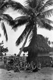 Young Women in Polynesian-Flapper Costumes Lounge under a Coconut Palm