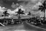 The View West from Segovia Plaza to the Granada Golf Course  Coral Gables  Florida  July 7  1925