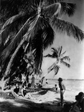 Relaxing under the Palms at Tahiti Beach  Coral Gables  Florida  March 23Rd  1926