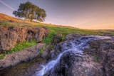 Spring Morning Stream at Table Mountain