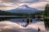 Quiet Time at Trillium Lake  Mount Hood Wilderness  Oregon