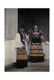 Portrait of a Young Bridal Couple Dressed in Typical Bridal Costume