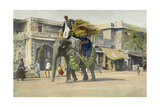 An Elephant Carries a Man and Straw Through the Street of Jaipur