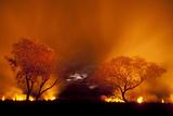Grass Fire at Night in Pantanal  Brazil