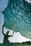 Fisherman Casting Net over Gilt-Head Bream (Sparus Aurata) the Frioul Island  Marseille  France