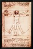 L'Homme de Vitruve Affiche plastifiée encadrée par Leonardo Da Vinci