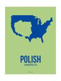 Polish America Poster 3