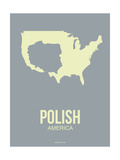 Polish America Poster 1