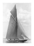 The Vanitie During the America's Cup  1910