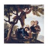 Boys Picking Fruit